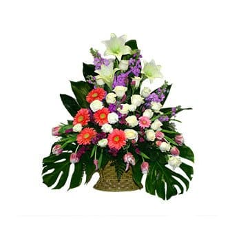 Bordeaux flowers  -  Tender Kisses Flower Delivery