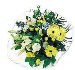Pouembout flowers  -  You are Special Flower Delivery