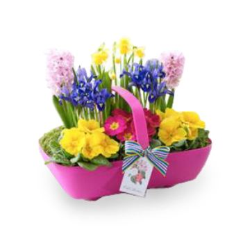 United Kingdom flowers  -  A Basket of Beautiful Blooms Baskets Delivery
