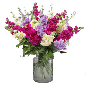 Leeds flowers  -  A Beautiful Bloom Baskets Delivery