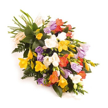 United Kingdom flowers  -  Colorful Freesia Bloom Baskets Delivery