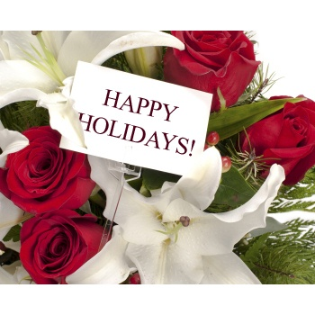 Bristol flowers  -  Holiday Melody Flower Delivery