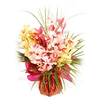 United Kingdom flowers  -  Orchids for Them Baskets Delivery