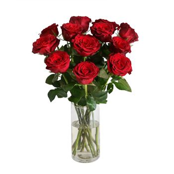 Bradford flowers  -  Timeless Dozen Rose Bouquet Flower Delivery