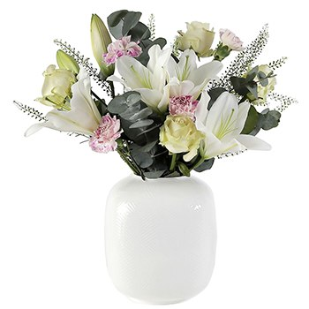 Sheffield flowers  -  White Elegance Flower Delivery
