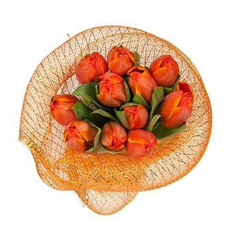 French Guiana flowers  -  Nontraditional Confessions Flower Delivery