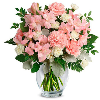 USA, United States online Florist - A Breath Of Beauty Bouquet