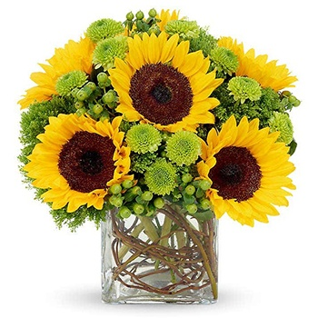 Wichita bloemen bloemist- A Touch Of Sunshine manden Levering