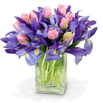 Boston, United States online Florist - Bouquet Surprise Bouquet