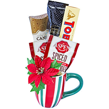 Columbus flowers  -  Christmas Morning Gift Mug Baskets Delivery
