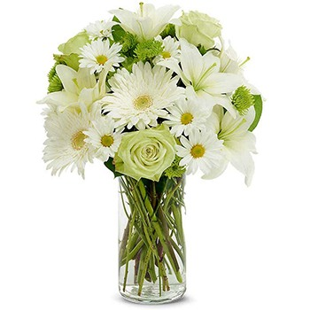 USA, United States online Florist - Clean Slate Bouquet