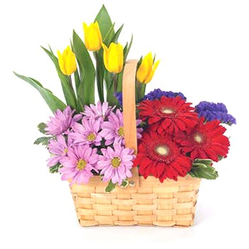 USA, United States online Florist - Meadow Basket Bouquet