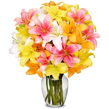 USA, United States online Florist - Morning Bouquet Bouquet