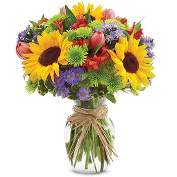 USA, United States online Florist - Sunflower Smile Bouquet
