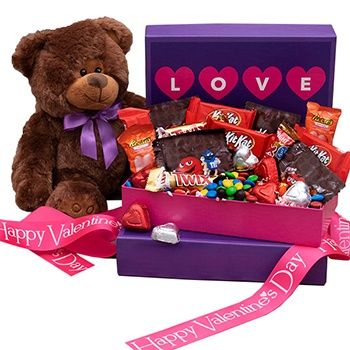 Houston flowers  -  Sweet Treats and Cuddle Bears Delivery