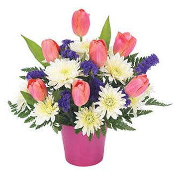 Tulsa flowers  -  Tempting Tulips Baskets Delivery
