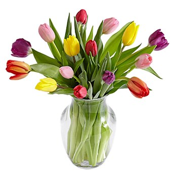Tulsa flowers  -  Vibrant Emotions Baskets Delivery