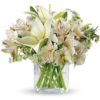 Austin flowers  -  White Elegance Baskets Delivery