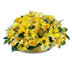 British Virgin Islands online Florist - Yellow Melody Bouquet