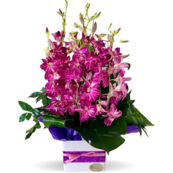 Gold Coast flowers  -  Rashaad Flower Delivery
