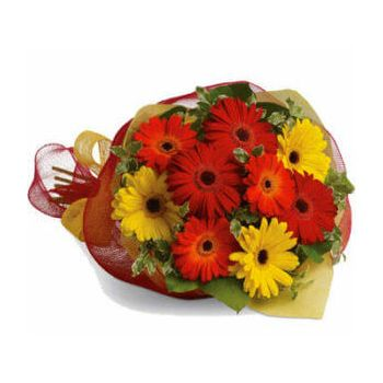 Gold Coast flowers  -  Roselys Flower Delivery