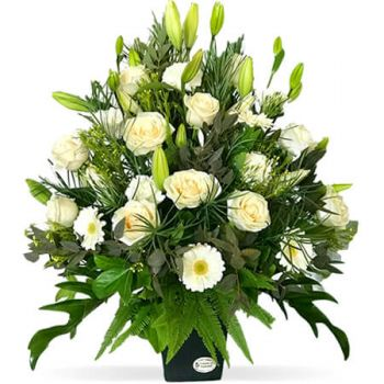 Gold Coast flowers  -  Victoria Flower Delivery