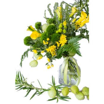 Chlef flowers  -  Djurdjura Flower Delivery