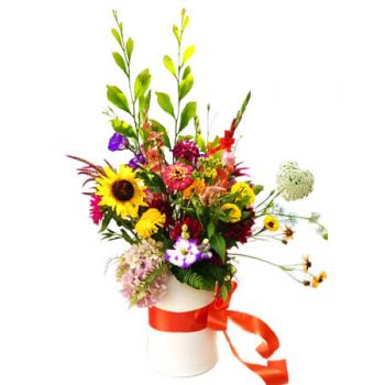 Algiers online Florist - Colors in a box Bouquet
