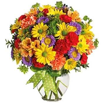 Sangre Grande flowers  -  MAKE A WISH Flower Delivery