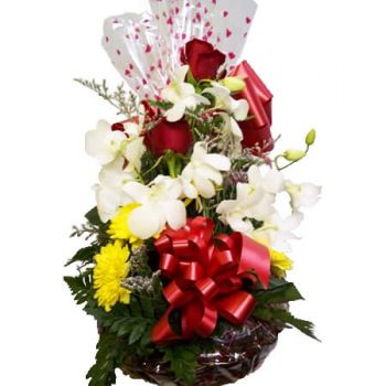 Bamboo flowers  -  GOODIE BASKETS Flower Delivery