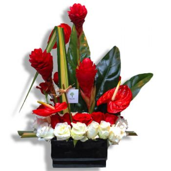 Juncos flowers  -  Tropical feelings Flower Delivery