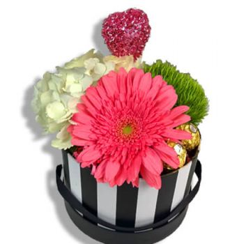 Juncos flowers  -  Pink flower pot Delivery