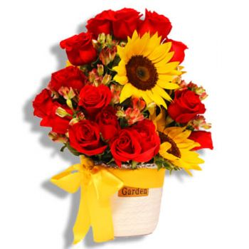 Carolina online Florist - Let the sunshine in your heart Bouquet