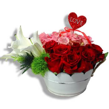 Carolina online Florist - All about roses Bouquet