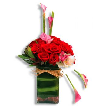 San Juan flowers  -  Tender love Flower Delivery