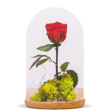 Almuñecar flowers  -  Eternal Rose Flower Delivery