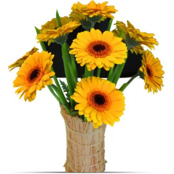 Bahrain flowers  -  Gerbera Flower Bouquet/Arrangement