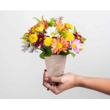 Recife online Florist - Arrangement of Colorful Daisies and Foliage Bouquet