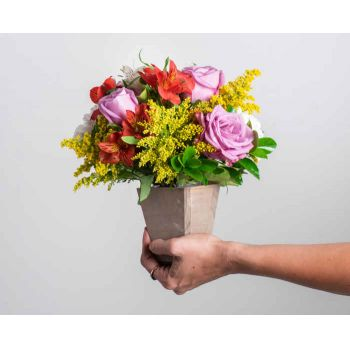 Manaus online Florist - Bicolor Arrangement of Roses and Astromelia Bouquet