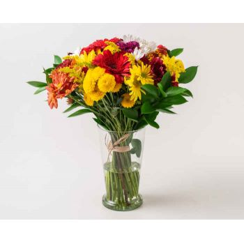 Belo Horizonte flowers  -  Large Arrangement of Colorful Potted Field Fl Flower Bouquet/Arrangement