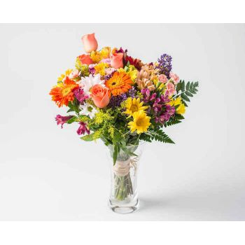Votorantim flowers  -  Medium Arrangement of Colorful Potted Field F Flower Delivery