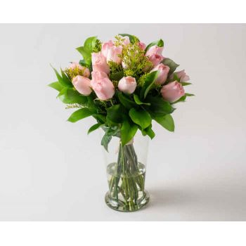 Brasília online Florist - Arrangement of 18 Pink Roses and Potted Folia Bouquet