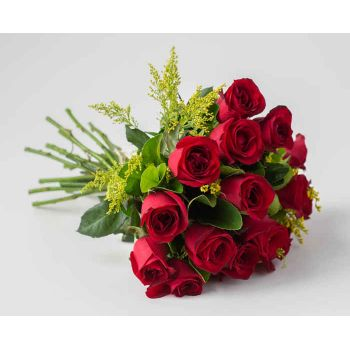 Recife flowers  -  Traditional Bouquet of 17 Red Roses Flower Delivery