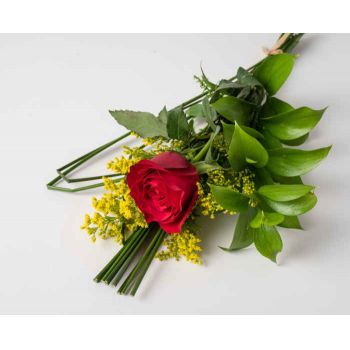 Belford Roxo flowers  -  Red Lonely Rose Flower Delivery