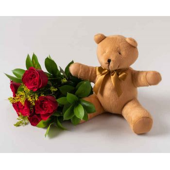 Mossoró flowers  -  Bouquet of 6 Red Roses and Teddybear Delivery