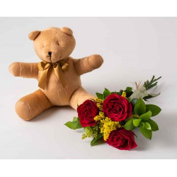 Mossoró flowers  -  Arrangement of 3 Red Roses and Teddybear Delivery