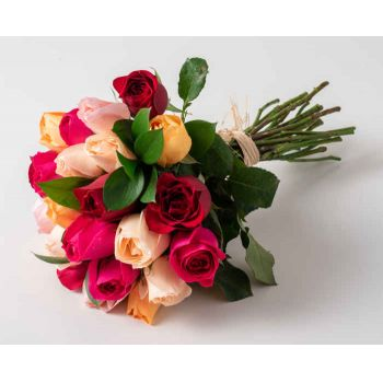 Barbacena flowers  -  Bouquet of 24 Colorful Roses Flower Delivery