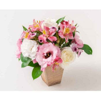 Brasília online Florist - Arrangement of Carnations, Roses and Astromel Bouquet