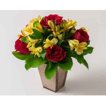 Manaus flowers  -  Small Arrangement of Red Roses and Astromelia Flower Bouquet/Arrangement