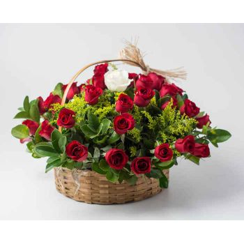 Ferraz de Vasconcelos flowers  -  Basket with 39 Red Roses and 1 Solitary Rose  Flower Delivery